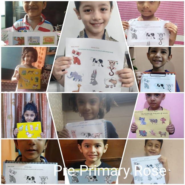 Pre Primary (KG) Online Show and Tell Activity