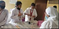 Science Exhibition 2021