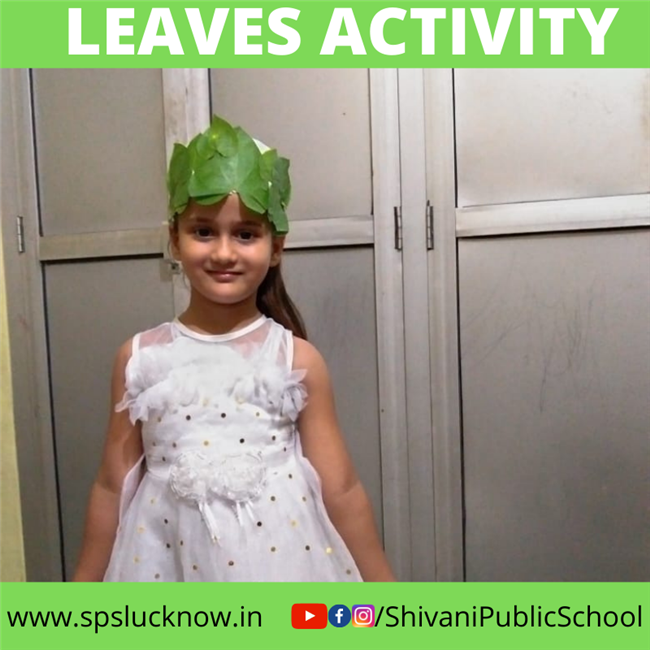 LEAVES ACTIVITY